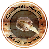 graines collection france